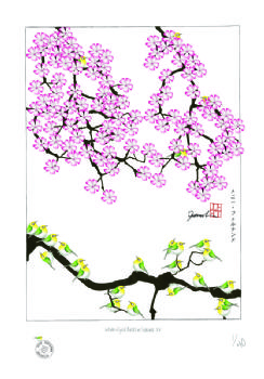 white eyed birds in sakura XV